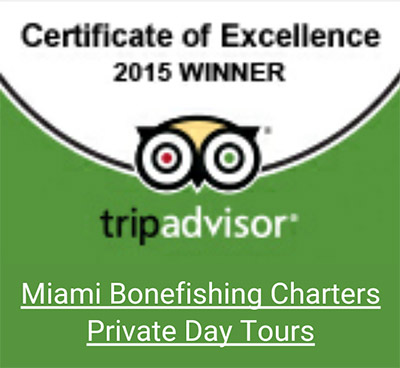 Trip Advisor Miami Fishing Charter