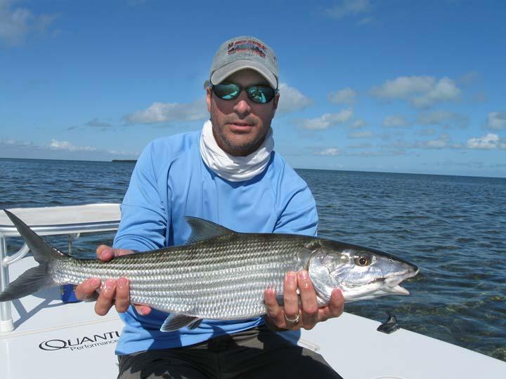 Gray snapper fish